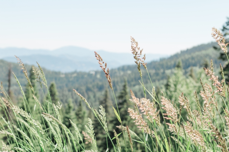 Idaho 18-4.jpg
